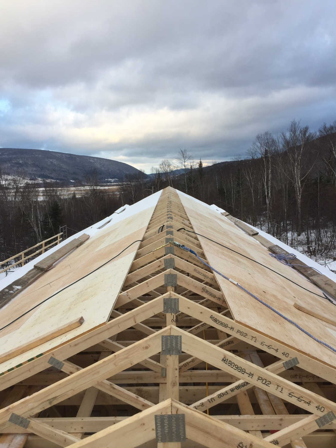 Margaree roof